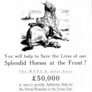 WW1 RSPCA Fund for sick and wounded horses