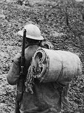 HIghlanders and sandbag bundles crop