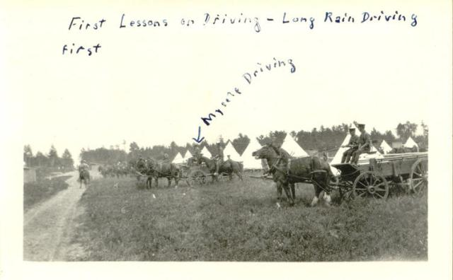 Calder driving lessons photo.nd.18