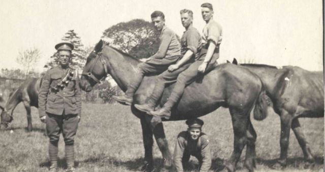 three soldiers on one horse witley.jpg