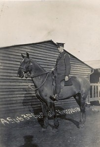 calder-on-horseback-witley-crop