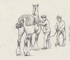 clipped horse from IWM ART 4945.JPG