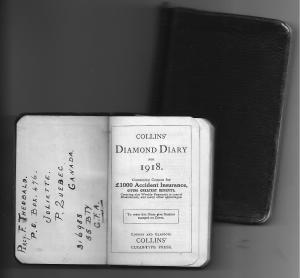 1918 diary 001