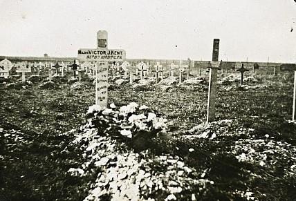 cemetery crop